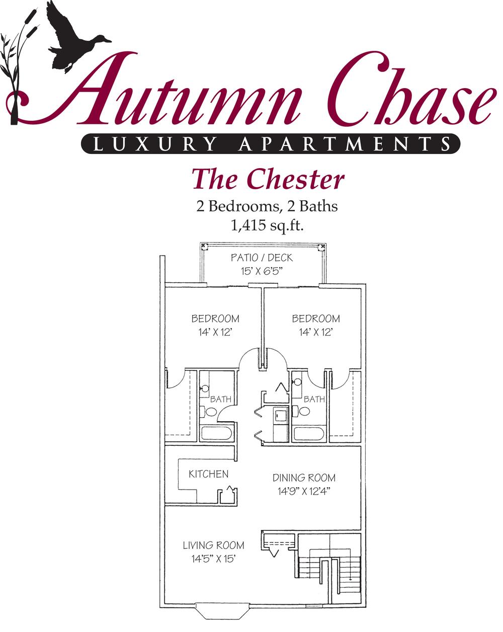 The Chester.jpg