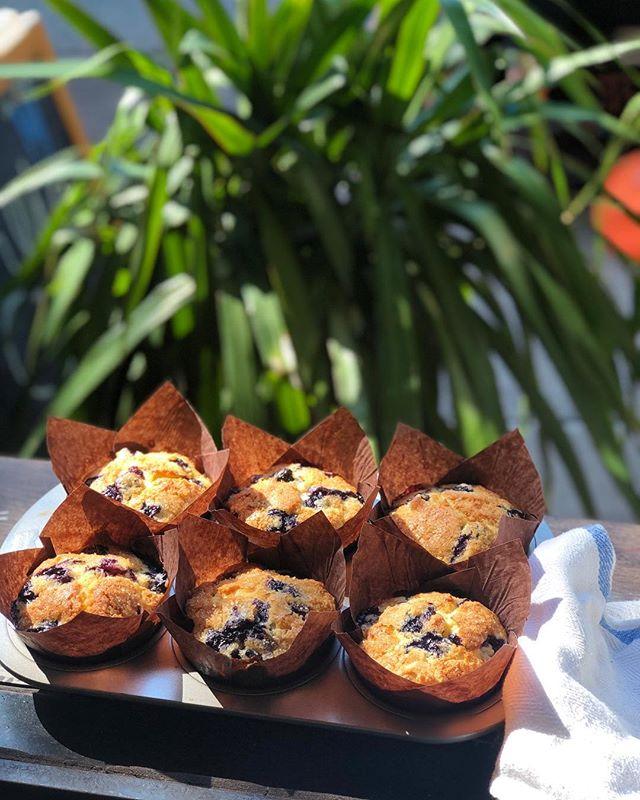 blueberry muffin, anyone?  #blueberry#blueberrymuffin#freshlybaked
