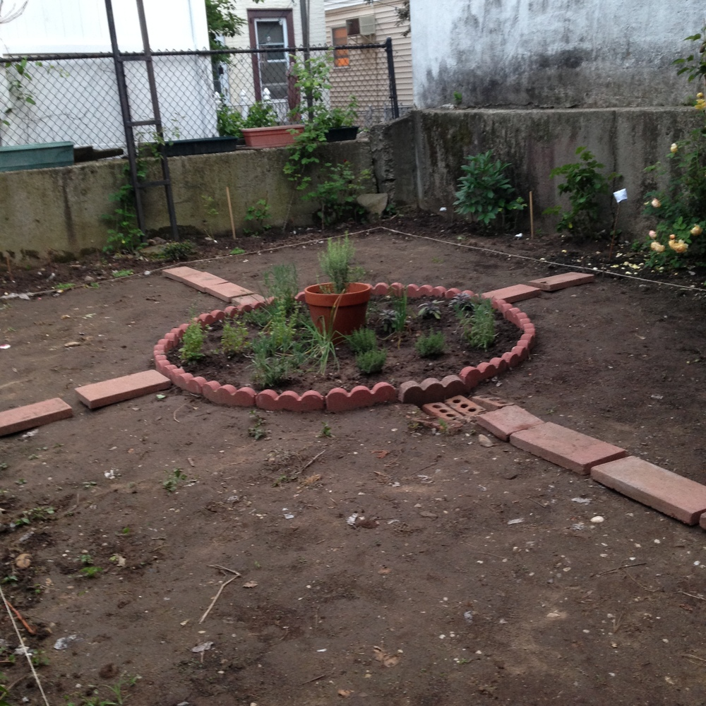 Before - the garden on June 9th