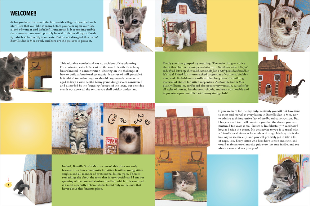 cat house_book_intro-2.jpg