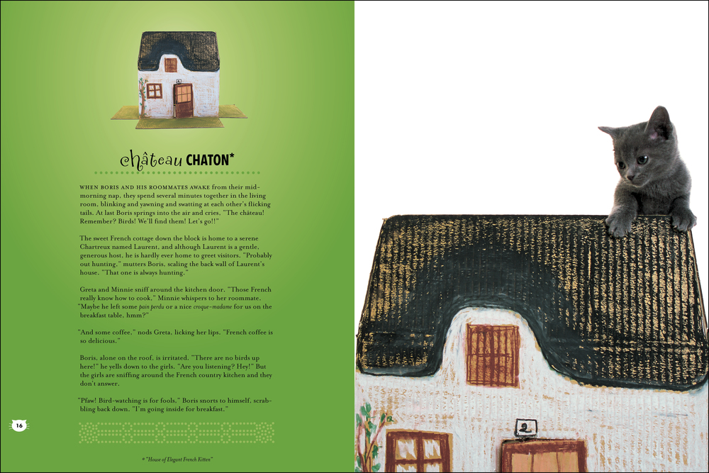 cat house_book_chateau-2.jpg