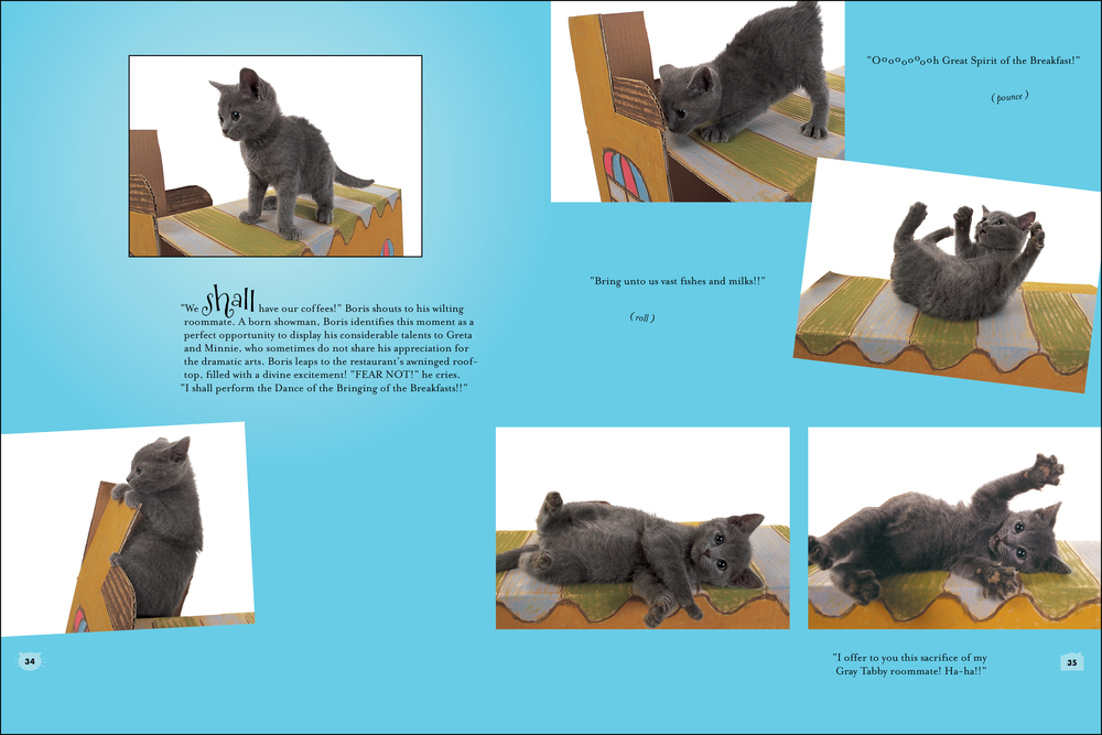 cat house_book_blue-2.jpg