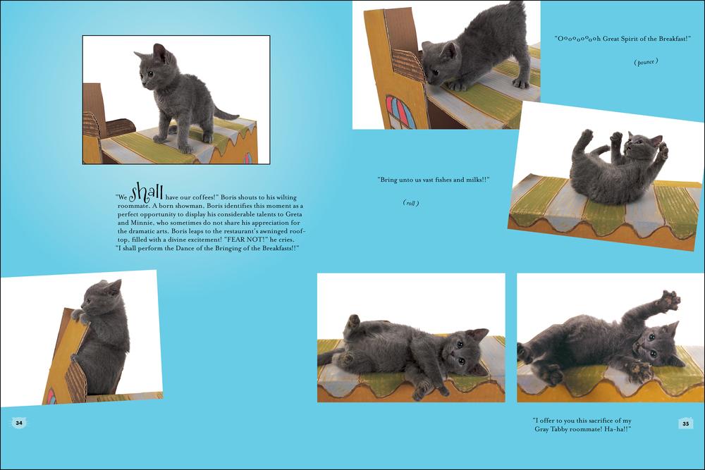 cat house_book_blue-2.jpg