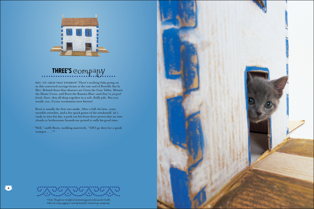 cat house_book_peek-2.jpg