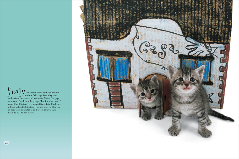 cat house_book_teal-2.jpg