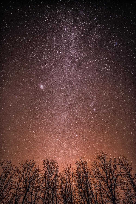 Dark Skies-1.jpg