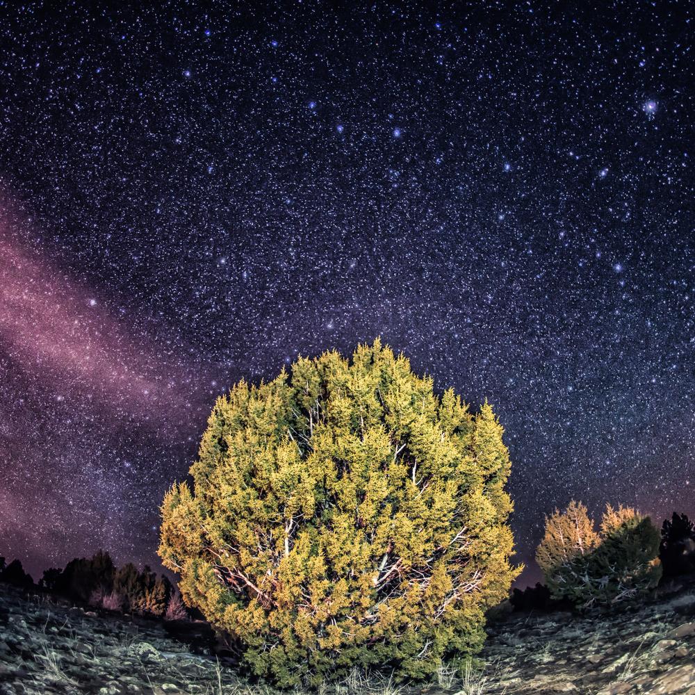 Dark Skies-10.jpg