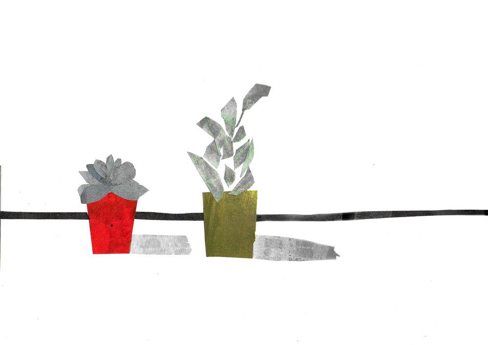 houseplants 2 equalised edit.jpg