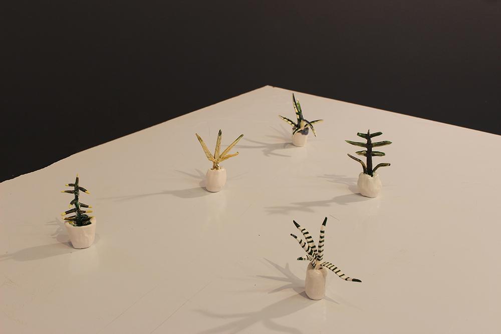 meghansamsonplants6.jpg