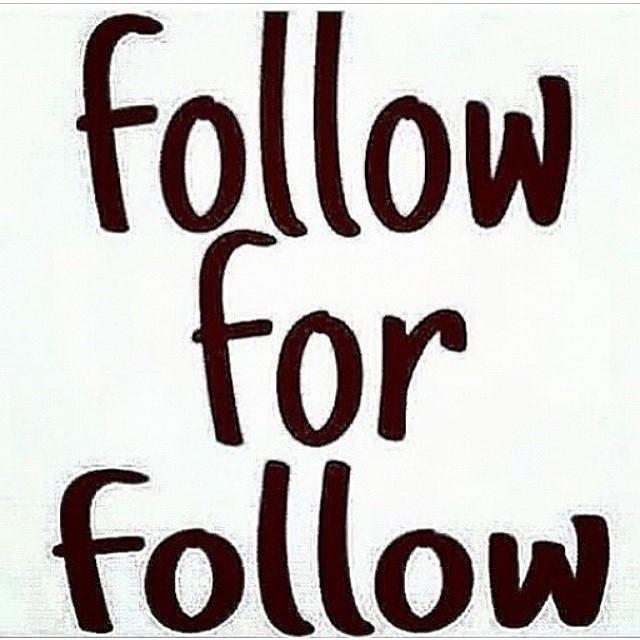 Follow 4 follow