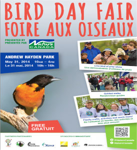 BirDay Fair poster 2014