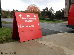 Live butterfly show sign