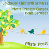 chickadee-childbirth-services.jpg