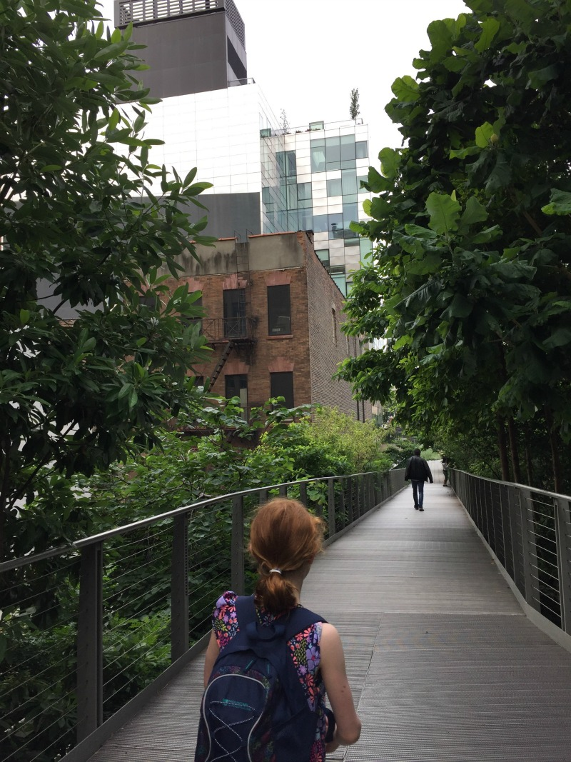 The High Line through Chelsea
