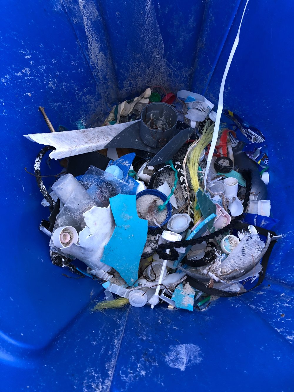 Garbage we collected from Daytona Beach