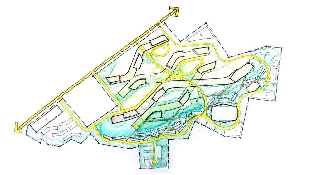 DSU - Concept Site Sketch.jpg