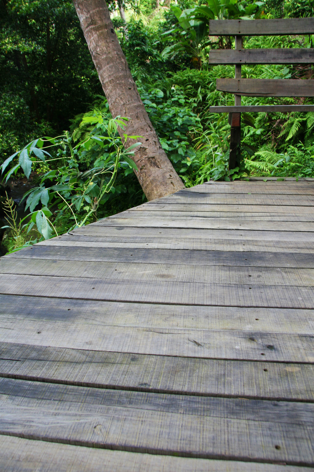 Solid Hardwood Recycled Exterior Decking Pool