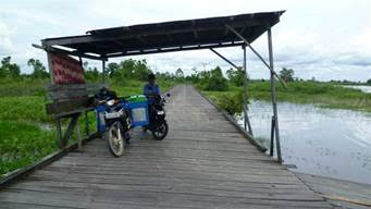 This 8km, 15 year old road in East Kalimantan is due to be shipped off to Bali and replaced with new illegal Ulin wood