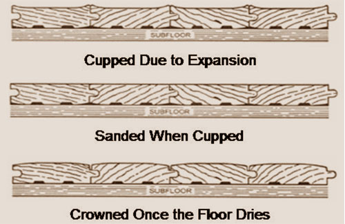 Problems cupping and crowning kaltimber for Hardwood floors cupping