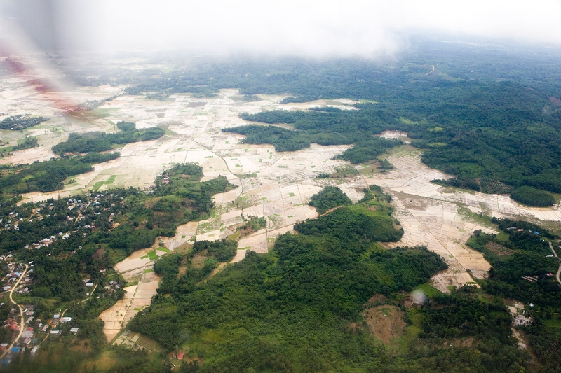 deforestation-overviewXL_278723-sm.jpg