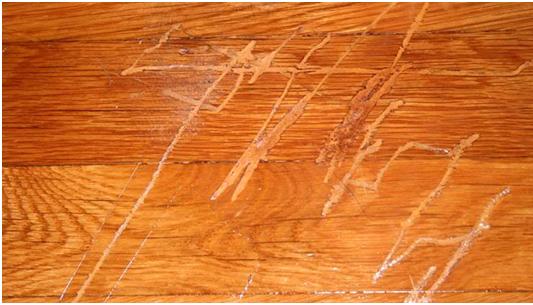 Scratch on flooring