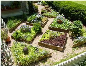 Small space gardening can enhance your garden.