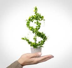 wallet friendly eco friendly