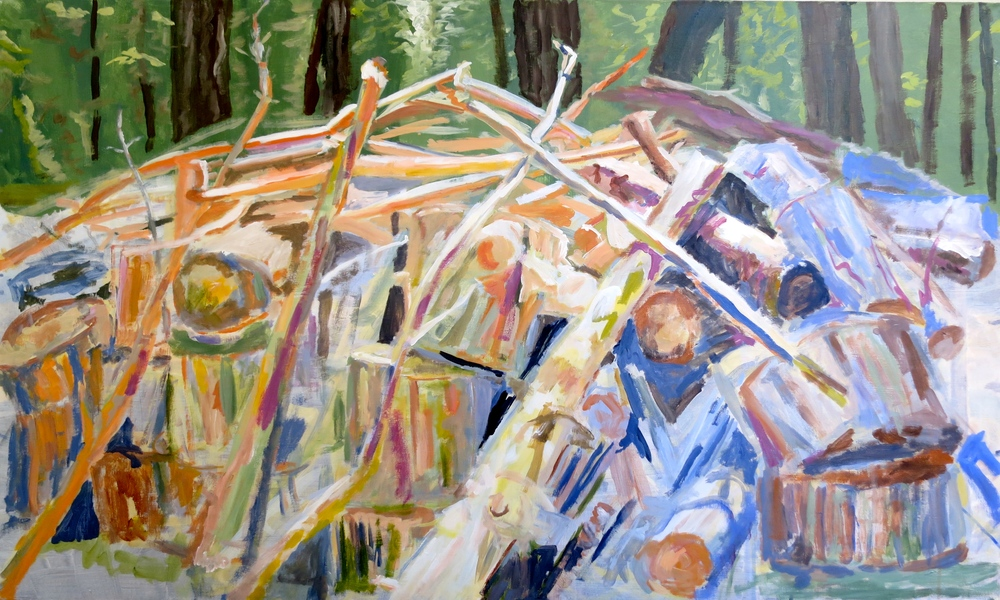 "Woodpile near Drakesbad Ranch, Acrylic on canvas 36"" x 60"" (unfinished)"