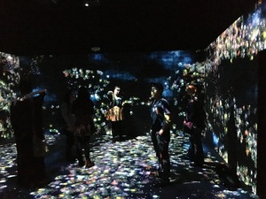 teamlab and pace gallery menlo park lydia dehn