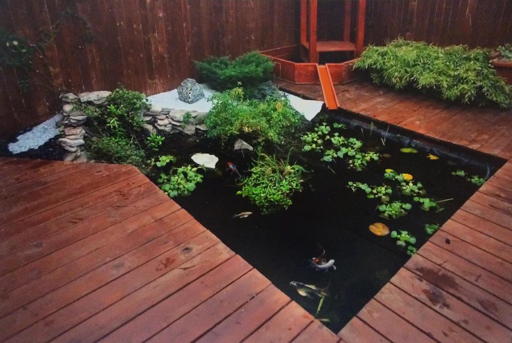 Custom Pond 1.jpg