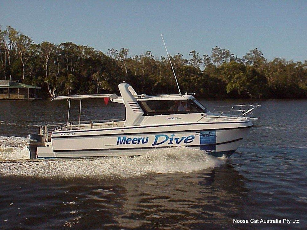 3100 Dive.jpg