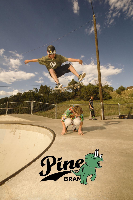 landon pine.jpg