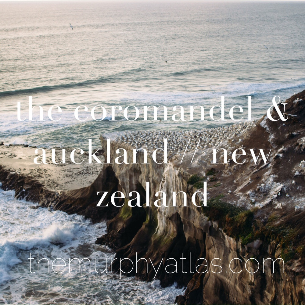 Guide to the Coromandel & Auckland // New Zealand - The Murphy Atlas