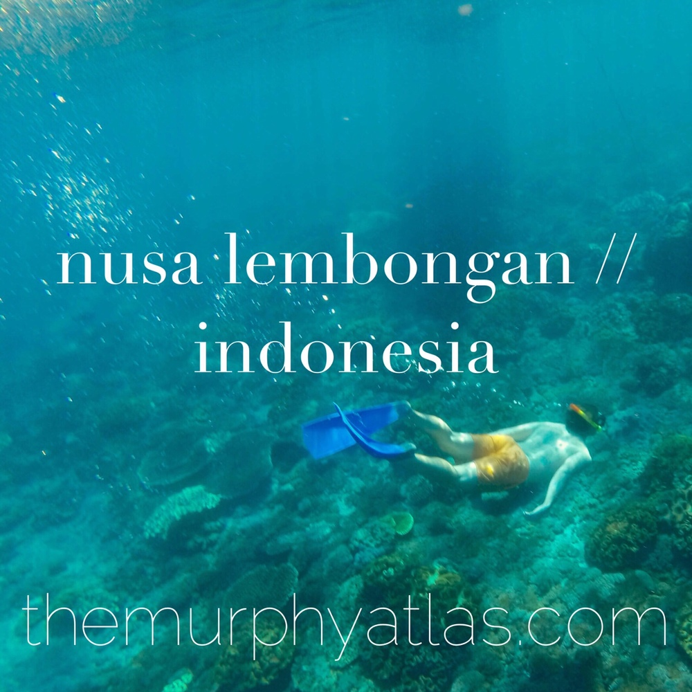 Tips for Traveling to Nusa Lembongan, Indonesia // The Murphy Atlas