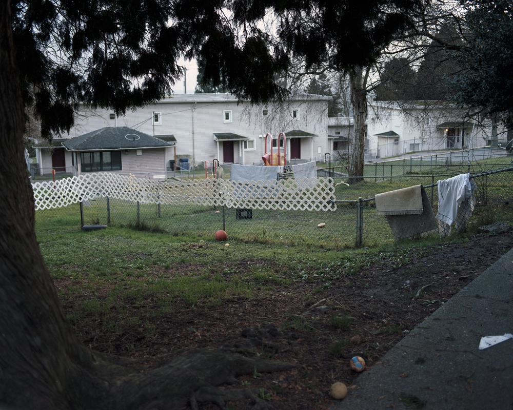 yesler central garden.jpg