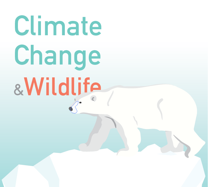 Climate Change and wildlife