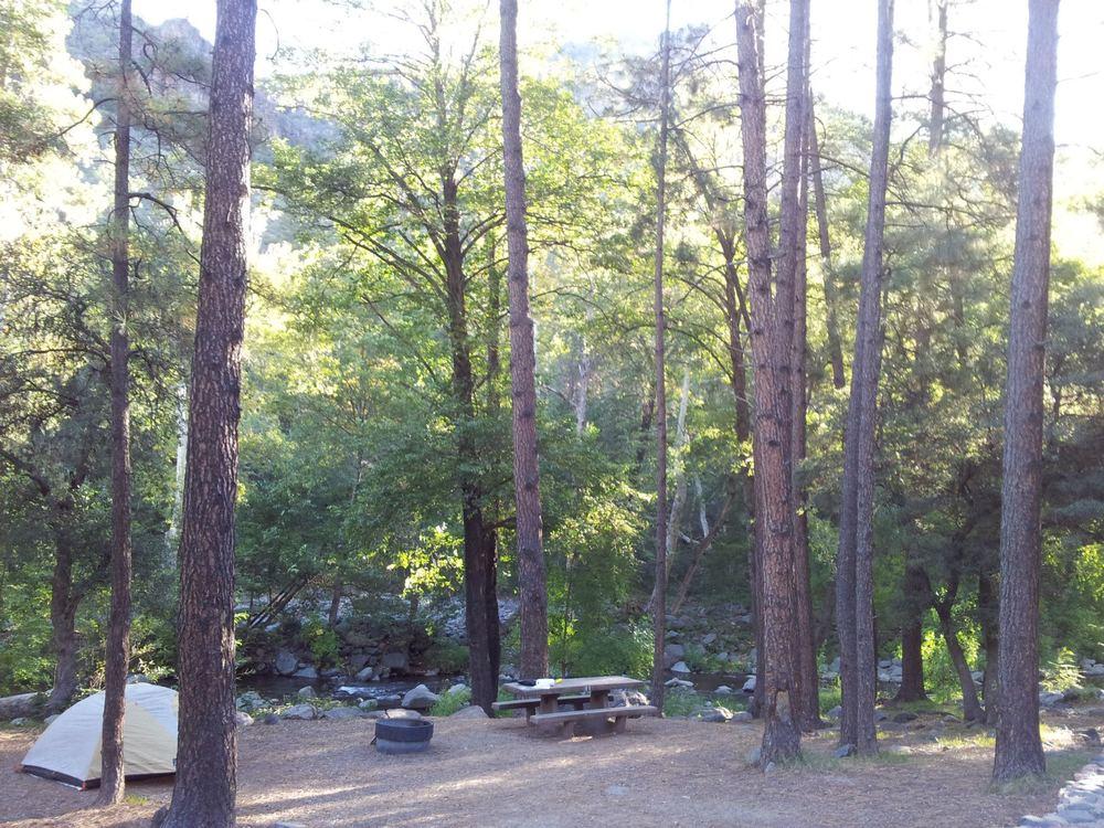 Camp spot #11 at Manzanita Campground
