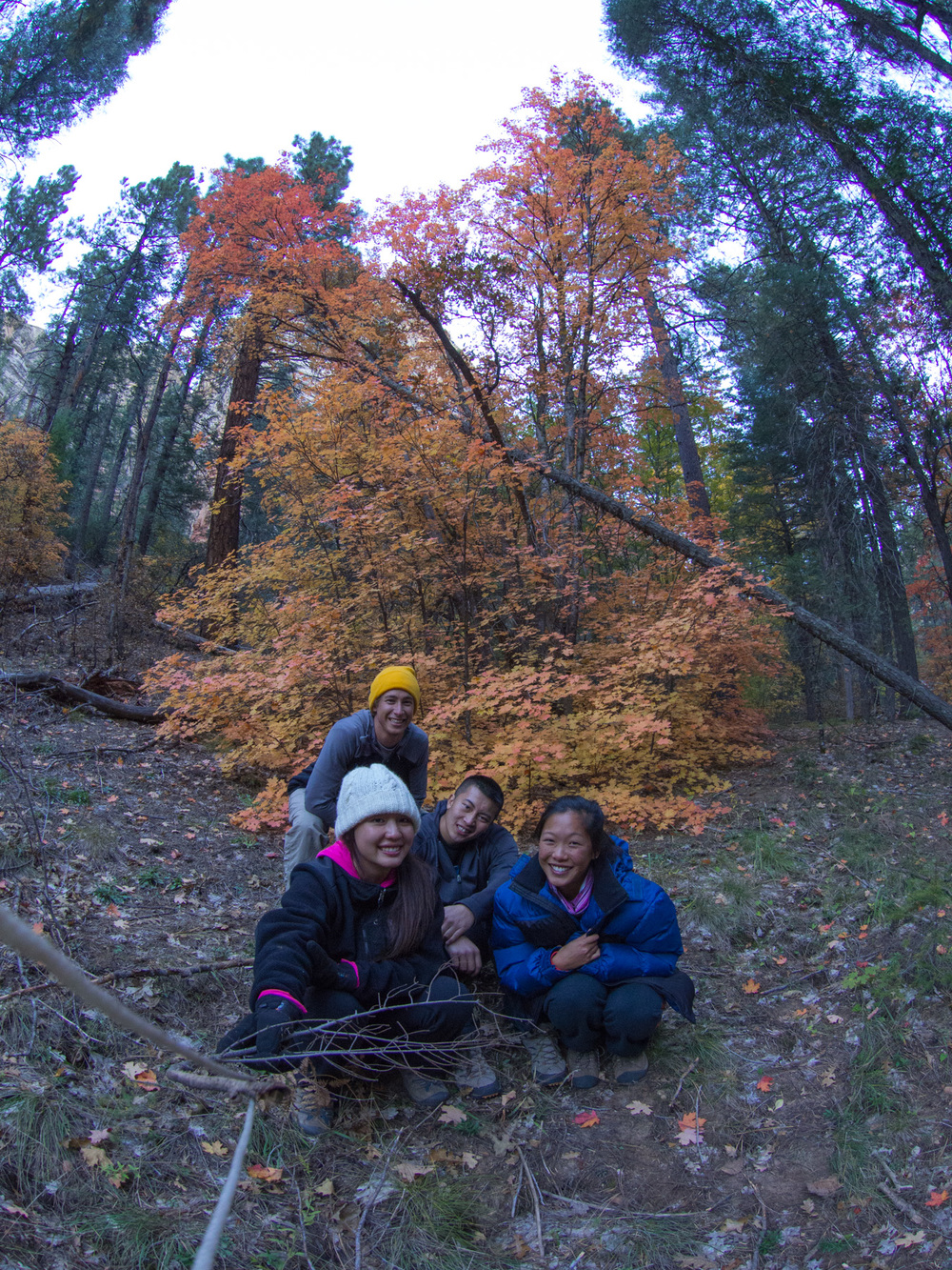 We stopped by a particularly colorful tree to snap a group photo