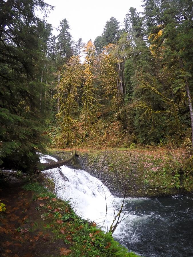 Twin Falls (31 ft)