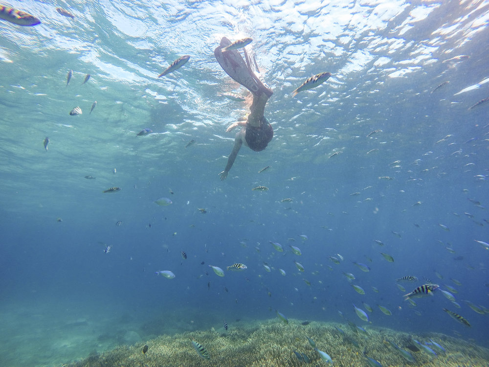 ceningan-wall-snorkeling-nusa-penida.jpg