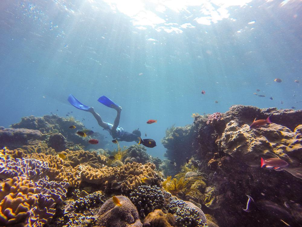 snorkeling-nusa-penida-bali.jpg