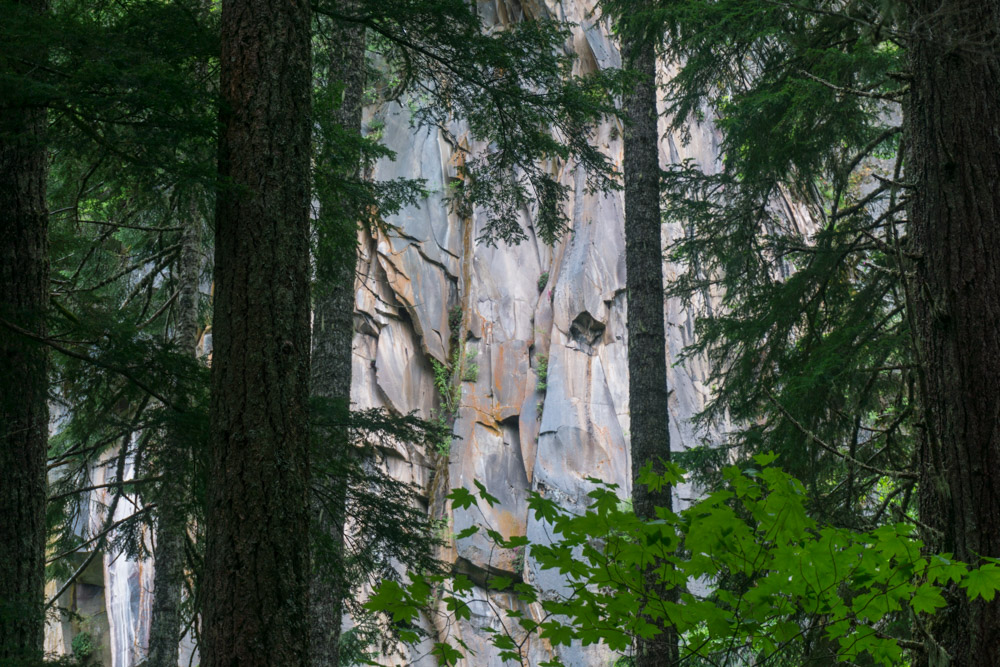 Getting a glimpse of the colorful rock wall towering above through the trees