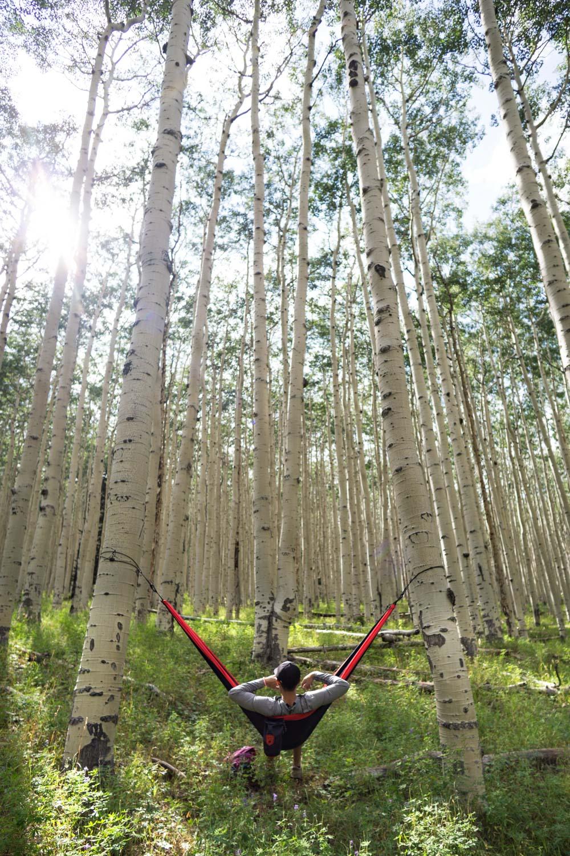 inner-basin-trail-hammock