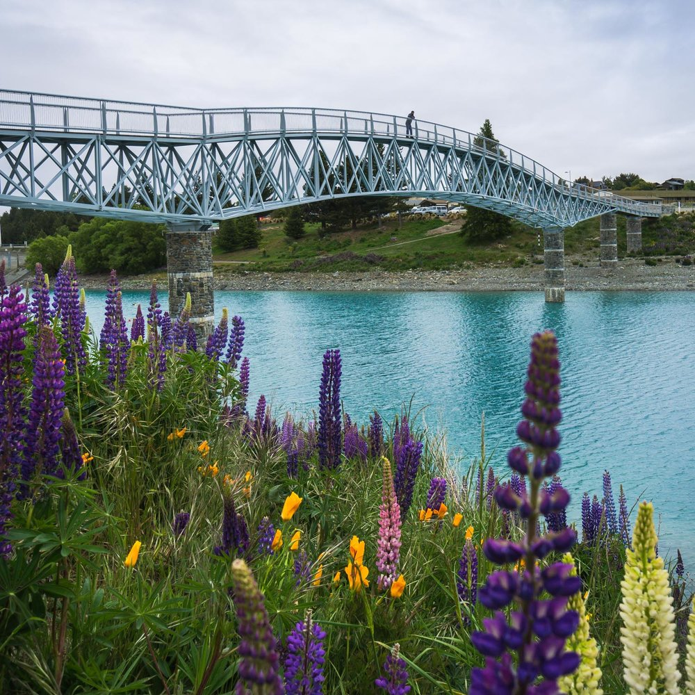 Walking the pedestrian bridge at lake tekapo