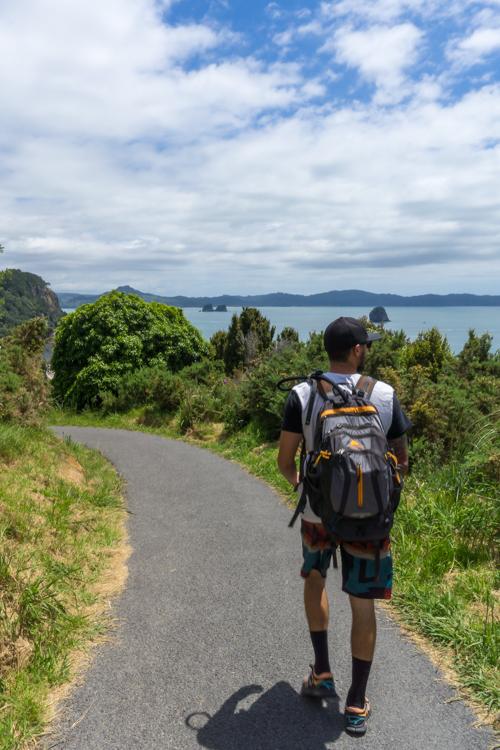 best hikes near auckland
