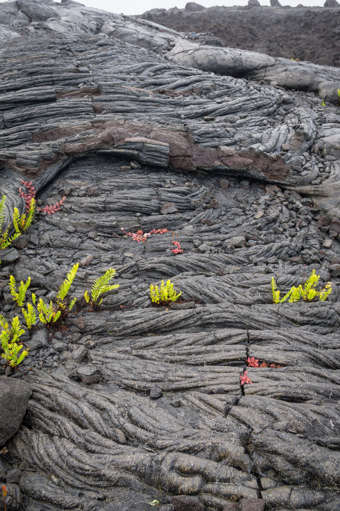 Ropey lava rock textures