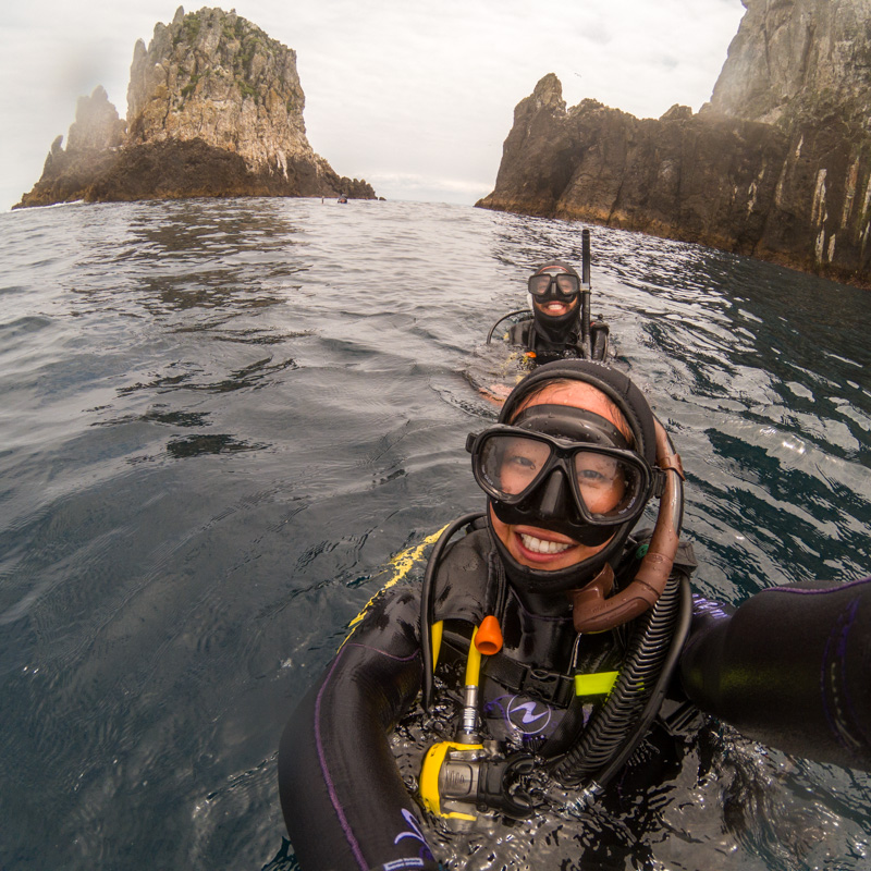 diving the pinnacles at poor knights island