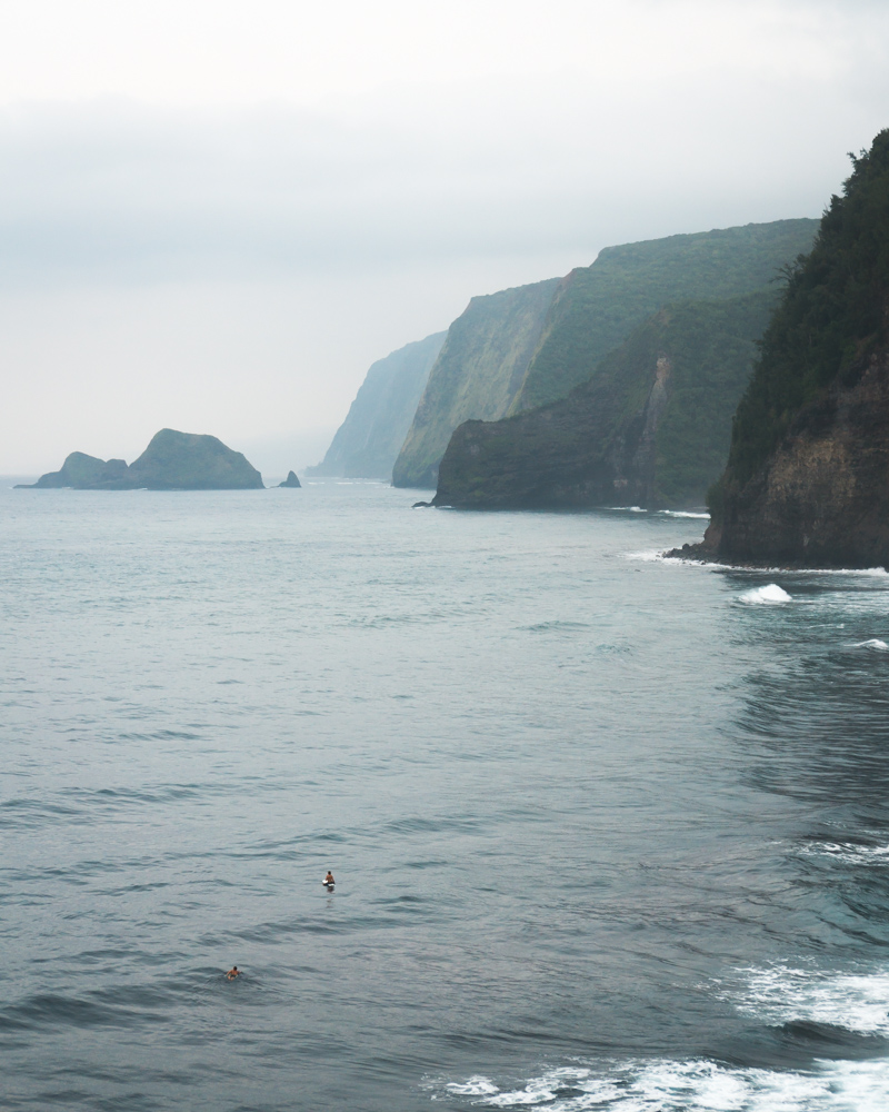 Surfers at pololu valley