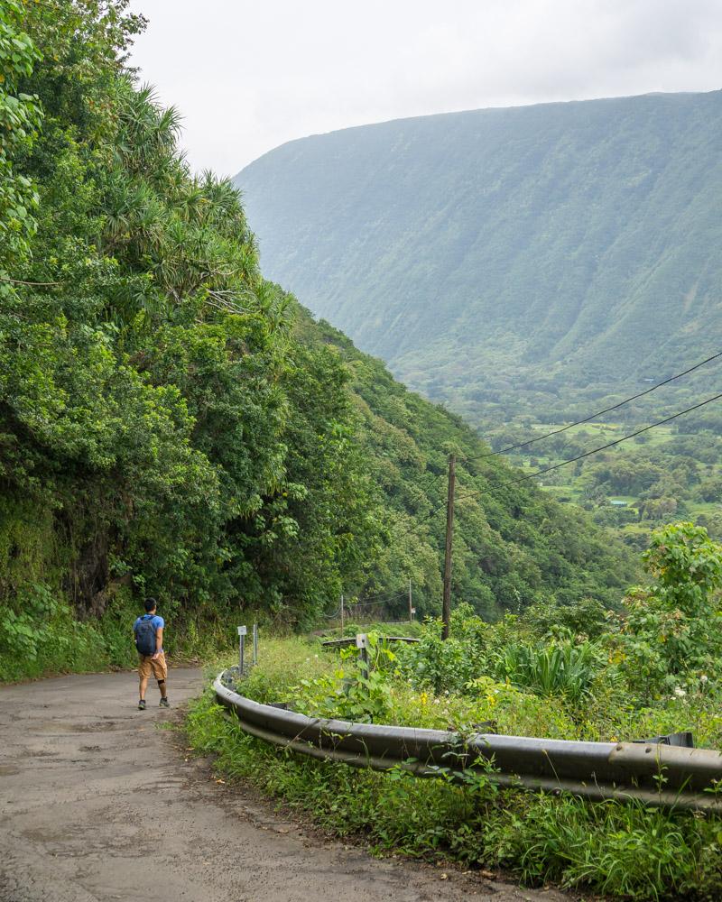 Day hikes on big island hawaii
