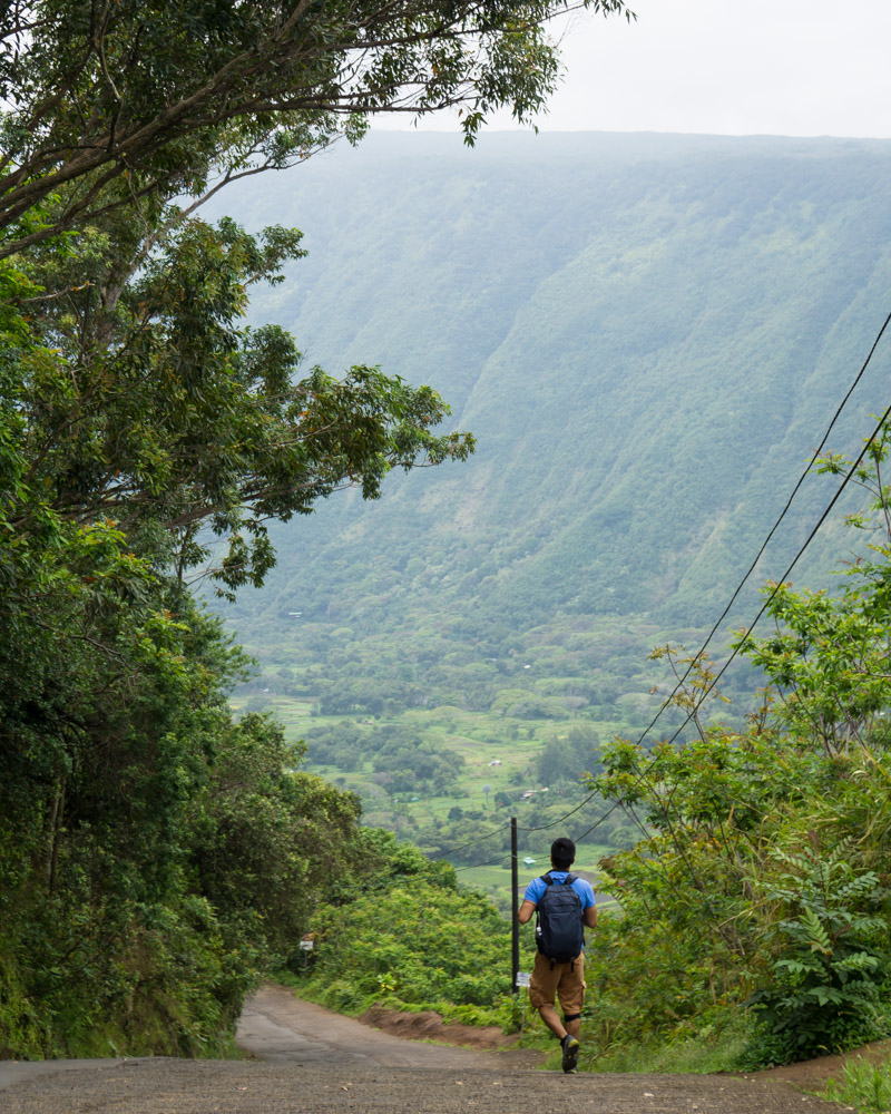 Best day hikes in Hawaii